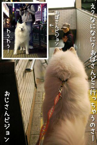修行の旅~完結編~_c0062832_17261961.jpg