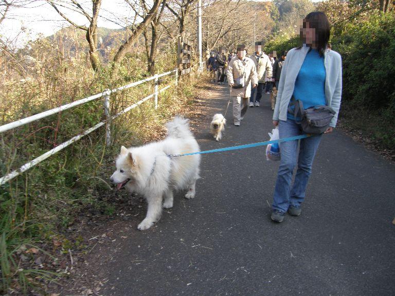 東京での王国ラスト訪問 その2_f0128542_241397.jpg