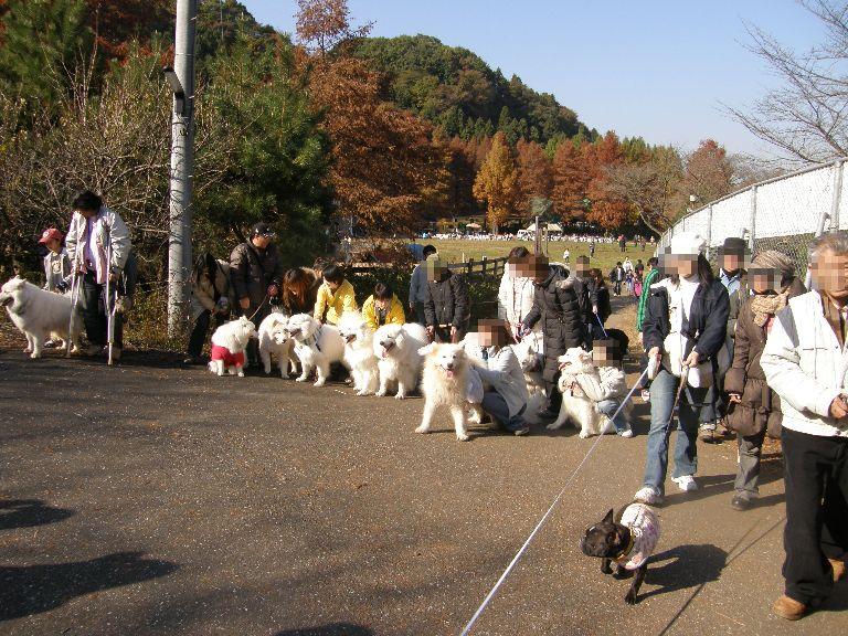 東京での王国ラスト訪問 その2_f0128542_241565.jpg