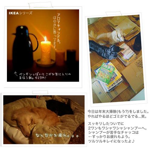 b0014949_1839421.jpg