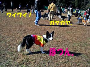 f0132070_0213652.jpg