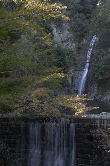 雌滝というだけあり、しなやかで流れの綺麗な滝でした。写りが悪いのですが、紅葉した木々と滝を合わせて撮ってます。