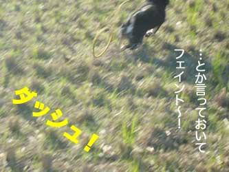 b0057675_12373137.jpg