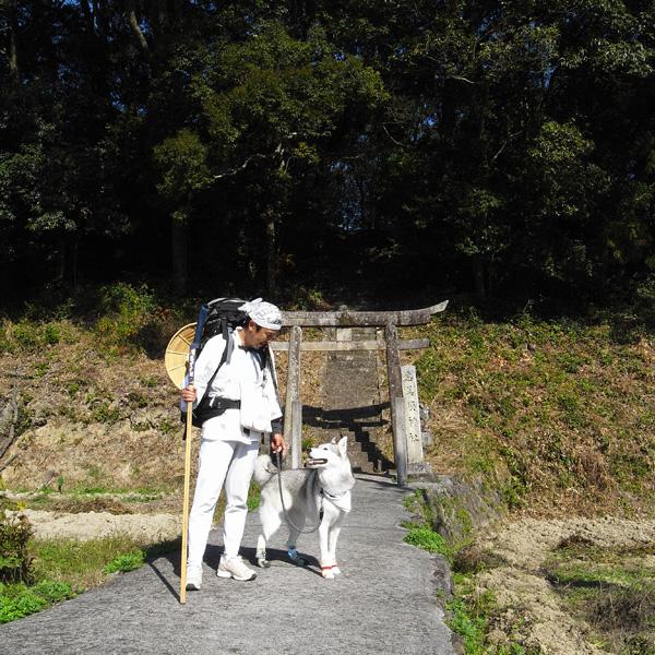11月13日(火) 秋へんろ第1日め_c0049299_20125482.jpg
