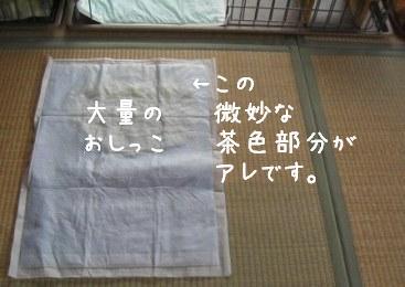 f0068501_1232769.jpg