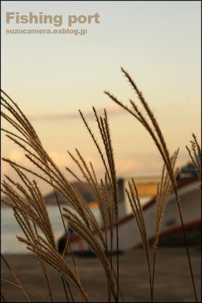 秋の漁港_f0100215_23432376.jpg