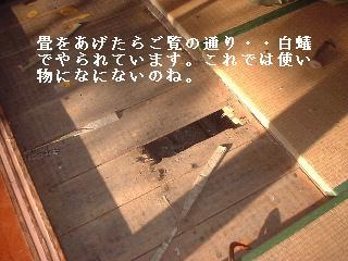 f0031037_1728929.jpg
