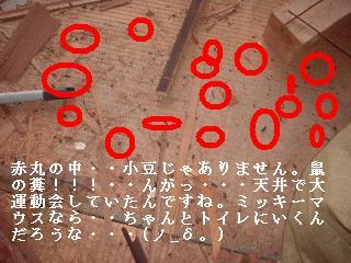f0031037_17293635.jpg
