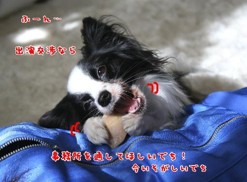 d0013149_2311361.jpg