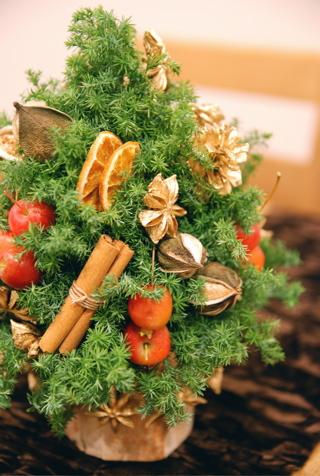クリスマストピアリー_d0078456_1002571.jpg