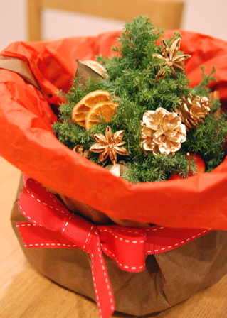 クリスマストピアリー_d0078456_1013299.jpg