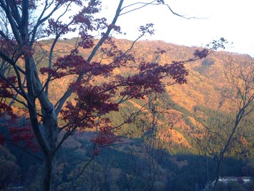 秋の紅葉を満喫して、自然にどっぷりつかる贅沢!_f0094800_1425488.jpg
