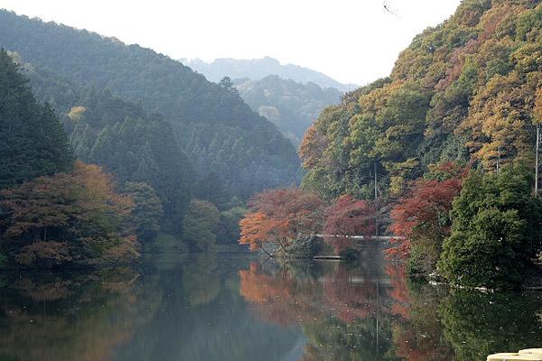 鎌北湖_d0026817_258252.jpg