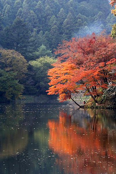 鎌北湖_d0026817_2584945.jpg