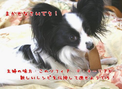 d0013149_00384.jpg