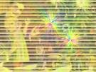 b0078675_21125875.jpg
