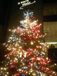 街中はクリスマス一色! ミキモトのクリスマスツリー_f0094800_12531976.jpg