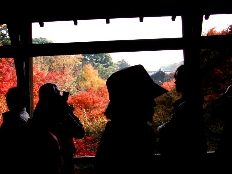 「紅葉の東福寺・・・Ⅱ」_d0133024_958217.jpg