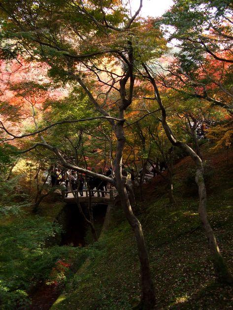 「紅葉の東福寺・・・Ⅱ」_d0133024_9592759.jpg