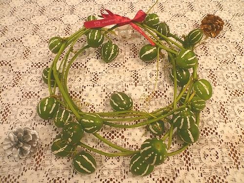 クリスマスの贈り物。。。For You。*。。*。:☆.。† _a0053662_145561.jpg