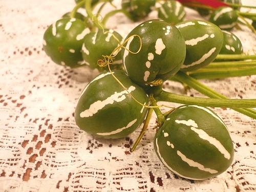 クリスマスの贈り物。。。For You。*。。*。:☆.。† _a0053662_14562254.jpg