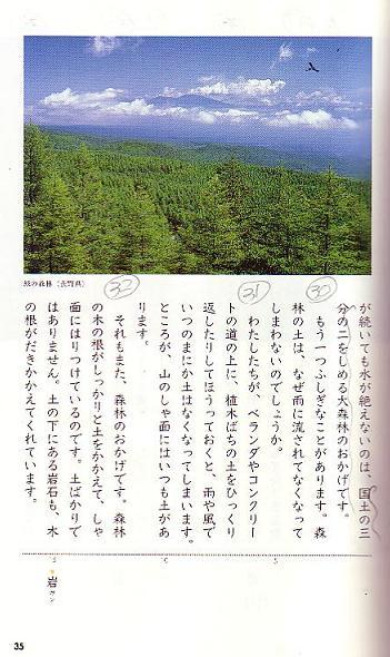 森林のおくりもの_f0138874_13194019.jpg