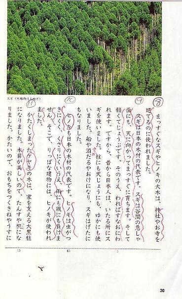 森林のおくりもの_f0138874_1355949.jpg