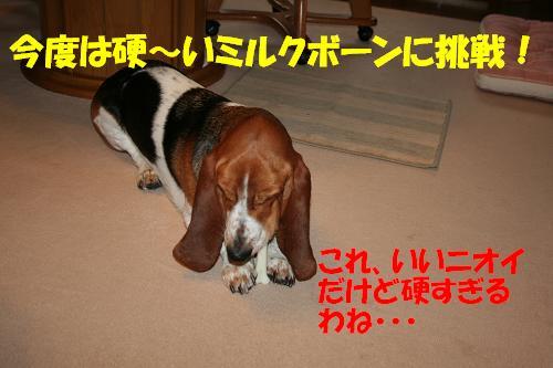 f0121712_16495437.jpg
