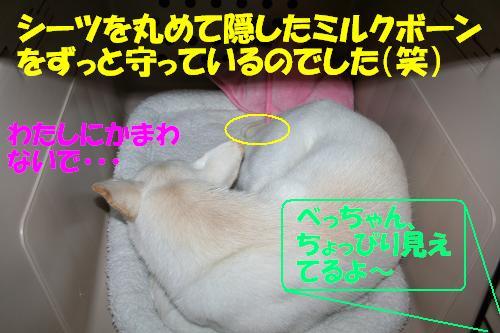 f0121712_16513092.jpg