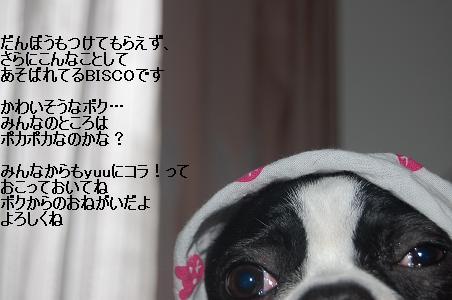 d0078616_2113328.jpg