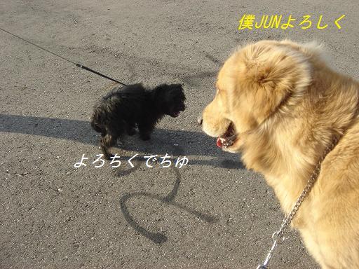 11月30日晴れ_f0114128_21464332.jpg