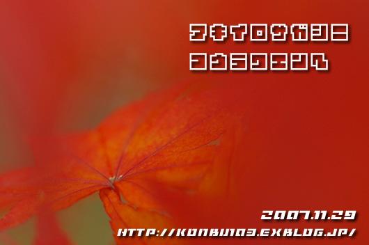 c0045129_233359.jpg