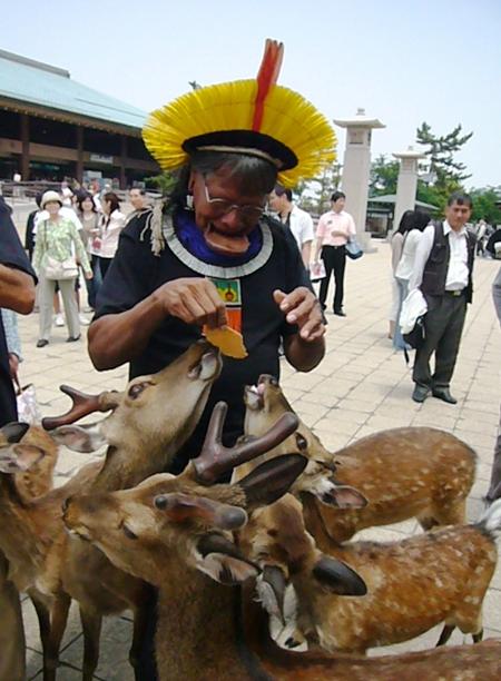 長老ラオー二、日本を行く  (7) 安芸の宮島へ_f0141559_104258.jpg