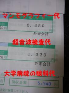 f0145192_15383155.jpg