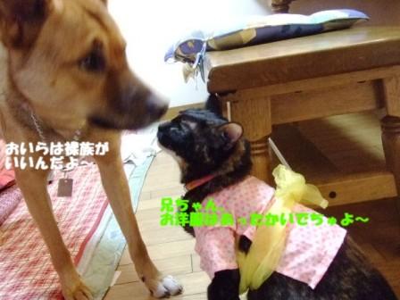 b0087400_21562691.jpg