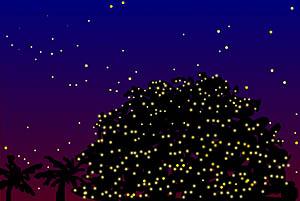 熱帯夜のクリスマス_b0073937_2224489.jpg