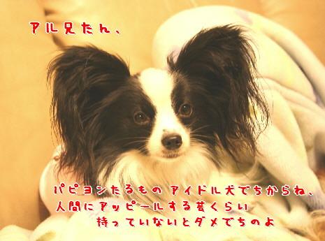 d0013149_0344198.jpg
