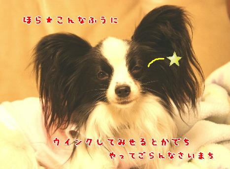 d0013149_0385767.jpg