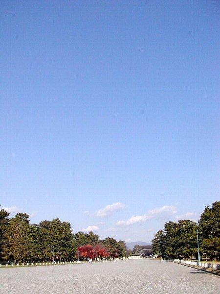 今日の京_c0057390_23121189.jpg