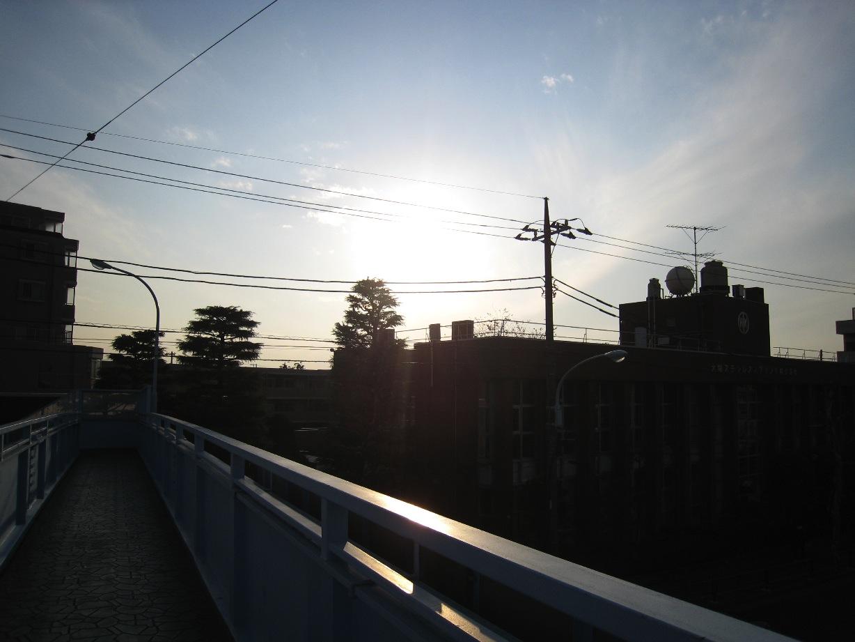 暖かい日?_f0141609_0384232.jpg