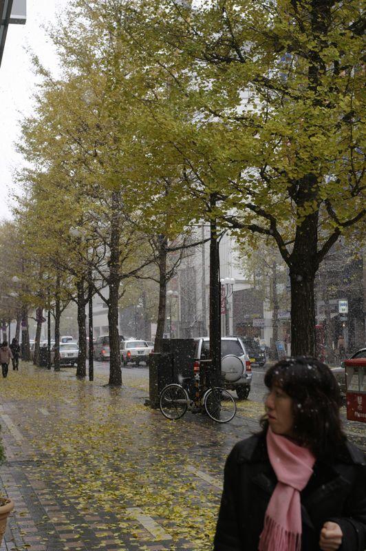 初雪の街角_f0042194_18181275.jpg