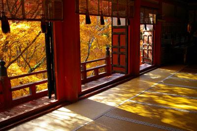 秋のグラデーションをたっぷりと。(談山神社〜長谷寺)_f0122107_9301014.jpg