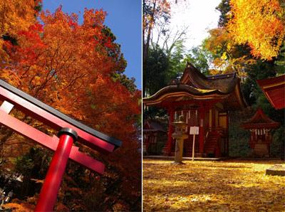 秋のグラデーションをたっぷりと。(談山神社〜長谷寺)_f0122107_9304530.jpg