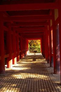 秋のグラデーションをたっぷりと。(談山神社〜長谷寺)_f0122107_932292.jpg