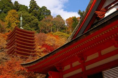 秋のグラデーションをたっぷりと。(談山神社〜長谷寺)_f0122107_9365122.jpg