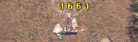 b0114126_134061.jpg