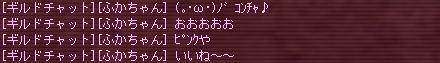 a0099556_19561582.jpg
