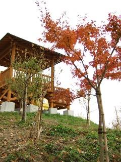 坂町・頭部(ずぶう)みはらし公園へ登ってみよう!①_b0095061_7582258.jpg