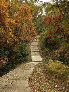 坂町・頭部(ずぶう)みはらし公園へ登ってみよう!②_b0095061_8183418.jpg
