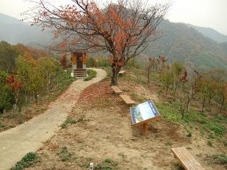 坂町・頭部(ずぶう)みはらし公園へ登ってみよう!②_b0095061_8241153.jpg